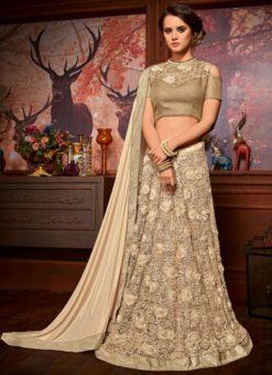 Amazing Designer Lehenga Saree
