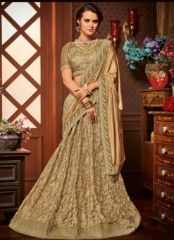 Beautiful Designer Lehenga Saree