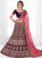 Blue Velvet Embroidered Work Designer Wedding Lehenga Choli