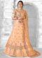 Beige Net Embroidered Work Designer Lehenga Choli
