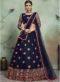 Fancy Party Wear Designer Lehenga Choli