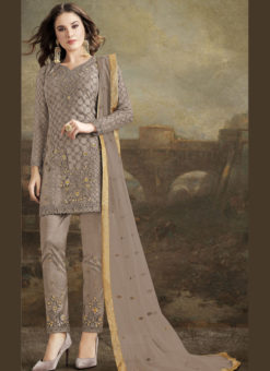 Lovely Beige Net Embroidered Work Designer Pakistani Suit