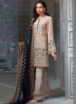 Beige Net Embroidered Work Designer Pakistani Suit