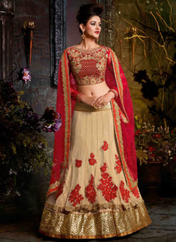 Beige And Red Velvet Lehenga Choli