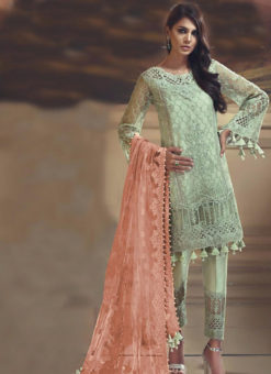Green Tissu Silk And Net Designer Pakistani Suit