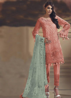 Orange Tissue Silk And Net Designer Pakistani Suit