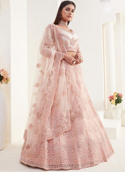 Attractive Pink Net Embroidered Work Wedding Designer Lehenga Choli