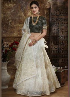 Amazing Beige Organza Embroidered Work Designer Lehenga Choli