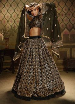 Black Net Party Wear Sequins Work Designer Lehenga Choli
