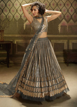 Grey Net Party Wear Sequins Work Designer Lehenga Choli
