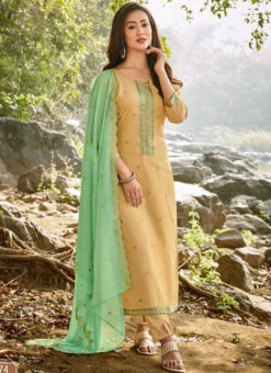 Elegant Beige Chanderi Silk Embroidered Work Designer Salwar Suit