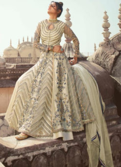 Wonderful White Net Embroidered Work Designer Anarkali Suit